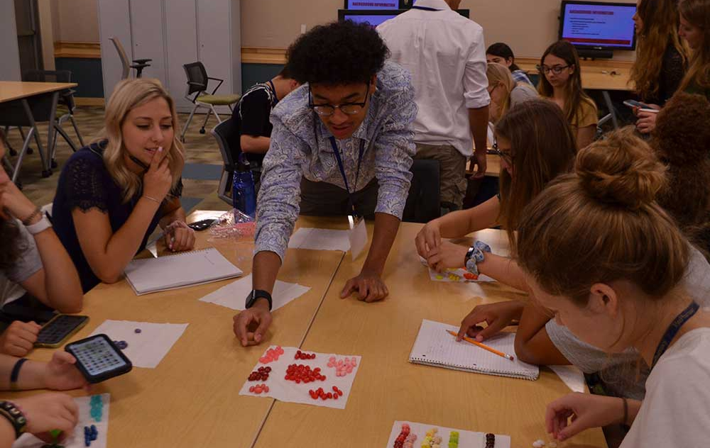 Students working collaboratively to solve a drug formulary problem